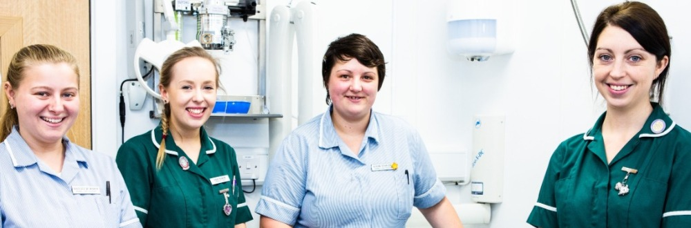 We offer a range of veterinary services at Hawthorn Veterinary Practice with modern consulting rooms. We use diagnostics including imaging and perform operations including dentals.