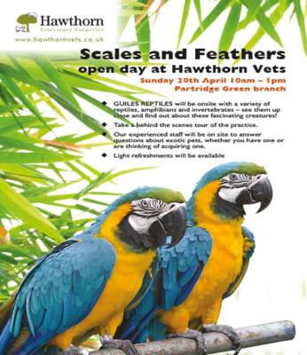 Exotic Pets Open Day!