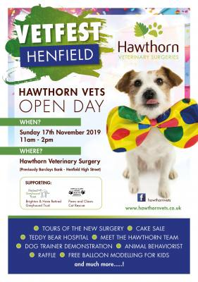 VetFest Henfield - Our New Practice Opening Day!