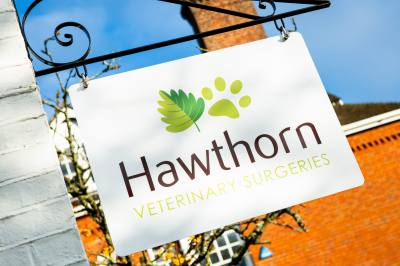 Guidance for visting Hawthorn Vets during Covid-19 restrictions